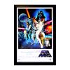 Harrison Ford Signed Star Wars Episode IV A New Hope 22x34 White Framed Movie Poster-32688