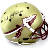 "Derek Brooks Signed Florida State Seminoles Schutt Full Size Helmet with ""CHOF 2016"" Inscription - JSA-0"
